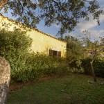 appartamento in affitto in Sardegna n. 601 - giardino